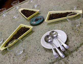 Utensílios usados na classificação do café