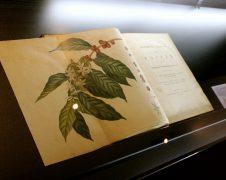 Dentre os livros raros que compõem o acervo do Museu, um deles é datado do final do século 17